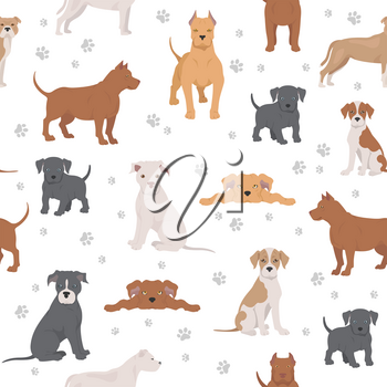 American pit bull terrier dogs set. Color varieties, different poses. Seamless pattern. Vector illustration