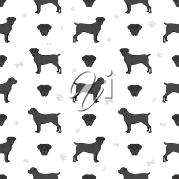 Cane corso seamless pattern. Different poses, coat colors set.  Vector illustration