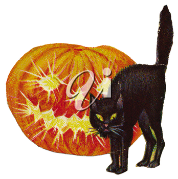 Royalty Free Clipart Image of a Black Cat and Jack-o-Lantern