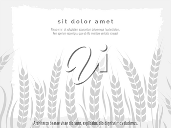 Horizontal agriculture poster with wheat branches vector illustration. Stylish monochromic harvest background