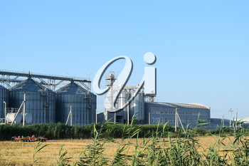 Plant for storage and processing of grain