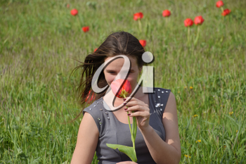 Beautiful fairy young girl in a field among the flowers of tulips. Portrait of a girl on a background of red flowers and a green field. Field of tulips.