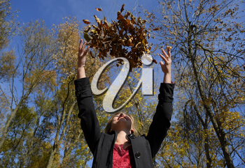 A woman throws up the autumn yellow leaves. Autumn in the park.