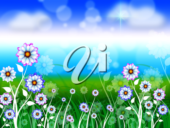 Flowers Background Meaning Blossoms Petals And Blooming