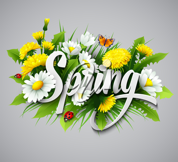 Fresh spring background with grass, dandelions and daisies