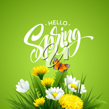 Inscription Hello Spring on background with spring flowers. Vector illustration EPS10