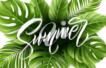 Summer lettering on palm leaf background. Vector illustration EPS10