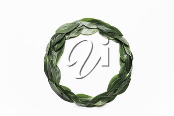 Green leaves in a round frame on a white background. Minimalistic, eco, eco-friendly, creative concept. View from above