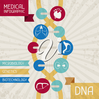 Medical infographic DNA abstract background.