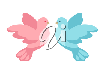 Pink and blue dove. Illustration for Wedding or Valentine day.