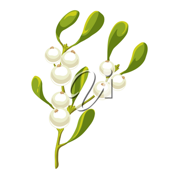 Illustration of mistletoe branch with berries. Stylized hand drawn image in retro style.