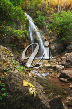 Waterfall and rill flow. Nature composition.