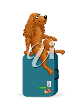 Cartoon dog sitting on a suitcase and dreaming. Vector illustration isolated on white background.