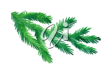 Fir branch isolated on white background. Hand drawn watercolor illustration. Christmas tree. New year and Xmas Holidays design.