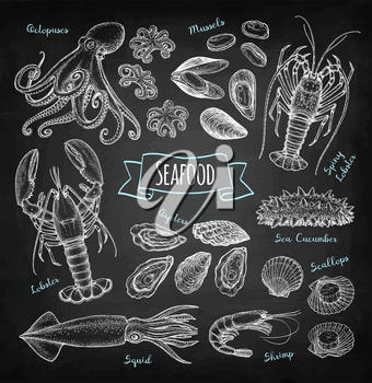 Seafood big set. Chalk sketch on blackboard background. Hand drawn vector illustration. Retro style.