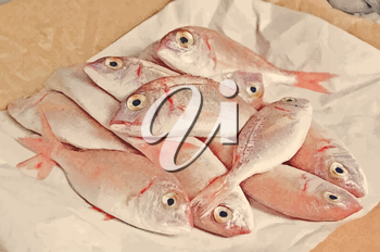 Fresh fish  with red carp  open mouth on paper packaging close up