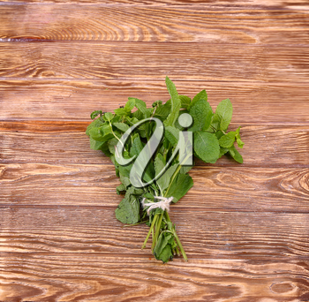 Bunch of mint on the boards, wooden background