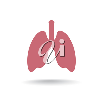 Human Lung Medical Organ Sing. anatomy icon.
