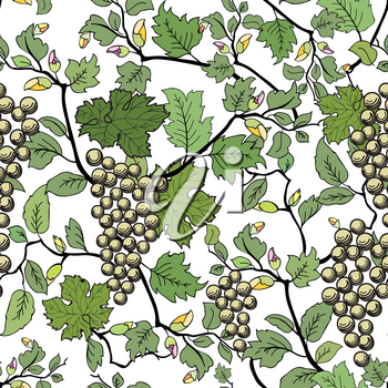Floral seamless background with grape branch. Decorative flower and fruit pattern.
