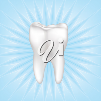Tooth isolated. Teeth white sign. Dental medical illustration.