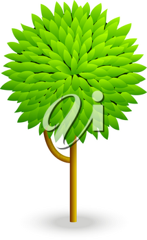 Concept of a tree on  white background. Vector illustration of a tree. The tree concept. The design of the tree. Green tree  isolated. Cartoon tree.