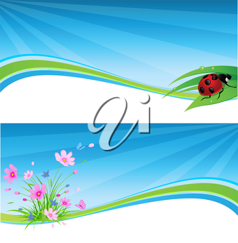 vector blue spring banner with flowers and ladybird