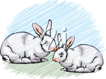 Rabbit illustration
