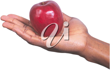 Royalty Free Photo of an Apple Sitting in a Man's hand