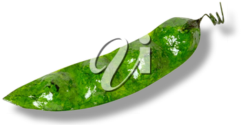 Royalty Free Photo of Pea Pod Art