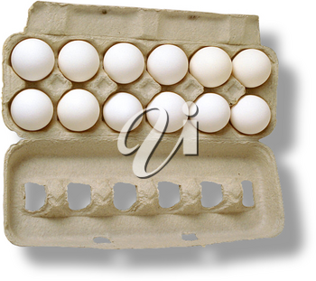 Royalty Free Photo of a Dozen White Eggs in a Carton
