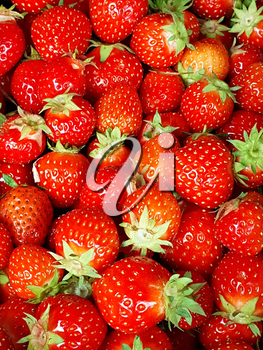 Full frame background with fresh whole strawberries with green leaves.
