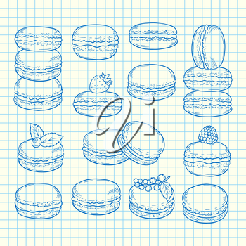Vector set of hand drawn macaroons on page cell sheet illustration