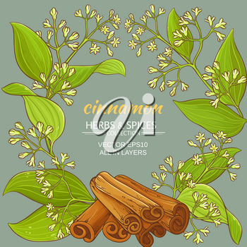cinnamon branches vector frame on color background