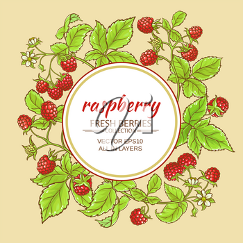 raspberry branches vector frame on color background