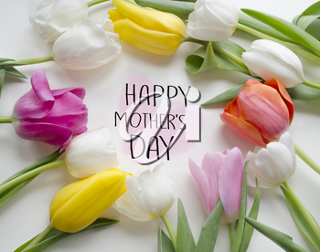 Mother's day greeting concept. Beautiful blossoming tulip flower. Floral design. Nature background. Spring background with beautiful fresh flowers.