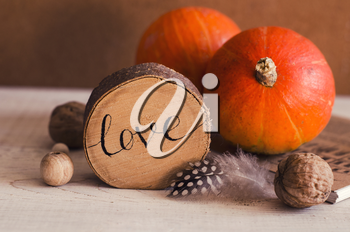 Composition with pumpkin, feather,walnuts, wood items. Autumn Seasonal Photo for Thanksgiving Day, Halloween