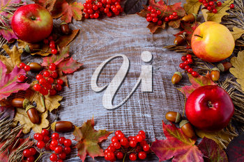 Frame of apples, acorns, berries and fall leaves on the rustic wooden background. Thanksgiving background with seasonal berries and fruits.
