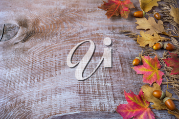 Thanksgiving  greeting with acorn and fall leaves on wooden background. Thanksgiving background with fall leaves. Copy space