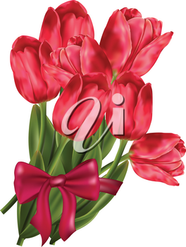 Pink tulips bouquet with bow and ribbon on white background.