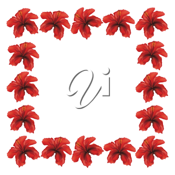 Floral frame made from red hibiscus flowers on white background.