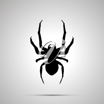 Insect icon, simple black silhouette on gray