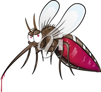 mosquito  cartoon isolated on white background