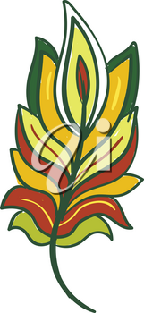 A gorgeous feather in red yellow green color vector color drawing or illustration