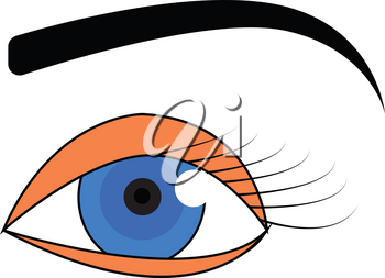 Blue eye with black eyebrow vector illustration on white background