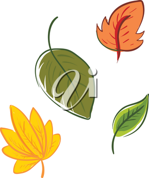Four multi-colored cartoon leaves of different shapes represent the autumn season vector color drawing or illustration