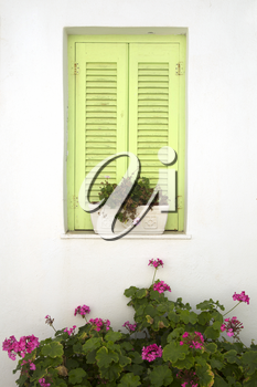 Green window on a white wall with flowers