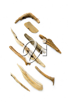 Collection of driftwood, wood that has been washed onto a shore or beach of a sea on white background